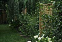 garden ideas / by Nikki Lirag