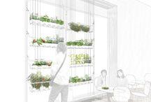 ARK: Greenhouses_Urban Green