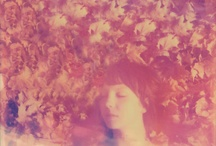Polaroid (inspiration)