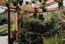 giardino d inverno Garage