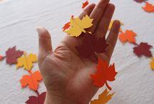 Fall / by Homeroad