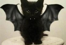 ::: Halloween :::
