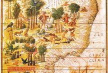 Brasiliana / Brazil, My Land / Geography, History, Culture, People, Nature ... / by Indigo Wings