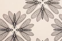 'Diatoms'