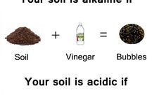Checking for what elements are in your soil