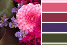 color palettes / by Kathleen Craft Loftus