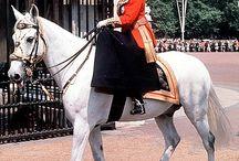 Rodzina Królewska w Anglii