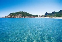 Ogliastra Best Beaches / Discover the Ogliastra's Best beaches: Su Sirboni, Coccorocci, Cala Goloritzè, Cala Mariolu, Cala Luna, Sa Perda Longa, Museddu, Su mari dividiu