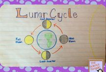 4th Grade Science / by Suzanna White