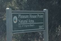 Pleasure House Natural Area / Hiking / by Brent Montella