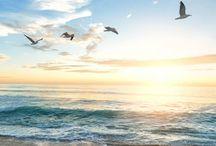 morze, inspiracje / sea inspirations