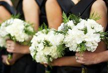 Black-and-white Weddings