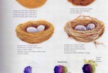 How paint