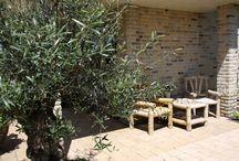 mediterrane tuinen