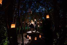 Hochzeit: Licht im Dunkeln (Tim)