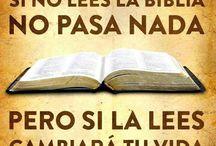 PASAJES BIBLICOS Y ESTUDIOS / AQUI VOY A PONER TEXOS DE LA BIBLIA QUE ME HABLEN CADA DIA Y ALGUNOS ARTICULOS DE ESTUDIOS BIBLICOS