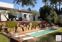 Reportage photo : une piscine de charme pour le sport et le bien être en Provence / Au cœur de la Provence, sur un terrain en terrasses, cette piscine de charme permet la pratique du sport tout autant que le bien-être pour les habitants de cette maison d'architecte.