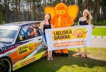 Lieliska Dāvana zilonītis / Meet our best friend - Elephant! You can meet him in different events around Latvia!