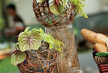 Woodland / Rustic charm personified