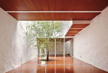 trees_in_architecture