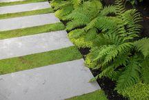 Garden -Landscaping