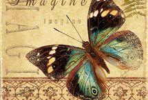 Vintage butterflies.