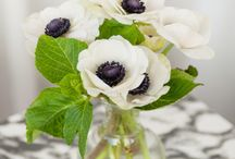 Flowers / by Homemade Ginger | Tutorials, Home Decor, Crafts, Kids Crafts, Craft Tutorials, Saving Money!