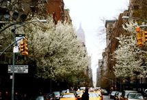 NYC  / by Marie Newkirk