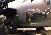 WW II aircraft noseart