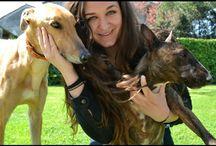 DINA&HENRY / ❤️my DOGS are my LIFE ❤️