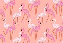 Love Pink! / Colourful Peachy Fresh Spring - Un printemps frais, coloré avec une touche de pêche