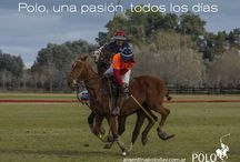 Polo Quotes / To Play Polo is To Love Life!  #PoloQuotes #Polo #LovePolo #FeelPolo #LivePolo #WeArePolo