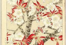 Flores de cuatro estaciones