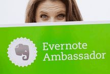 Evernote Tips / Learn how to use Evernote better.
