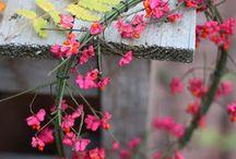 Blumen, Kränze