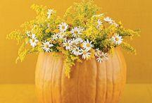 fall decorating / by Kathy Kimball