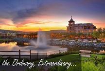 Live: El Dorado Hills, California / Spaces and places around El Dorado Hills, California.