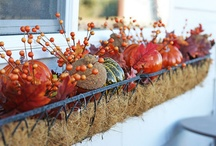 Holiday ~ Autumn / Lots of ways to decorate for the Fall!