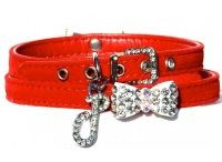 Cat and dog accesories / Luxury items for your furry friends