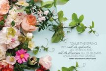 Mariage Camille