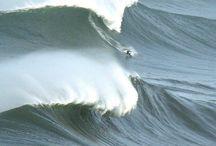 Wind Story / WIND STORY je příběh lidí, kteří fascinováni živly, jakými jsou bouřící oceány, vlny a vítr – hledají rovnováhu mezi svojí závislostí na jedinečném sportu, který přerůstá v celoživotní filozofii a životem se svými blízkými, kterým tato zvolená cesta přináší nejeden problém.