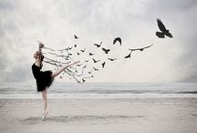 Dream on the wings of a bird