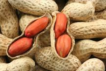 Peanuts / Everything peanut---nutrient dense, protein rich nut! / by Jennifer Iserloh - Skinny Chef