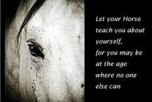 Inspirational Equine Quotes