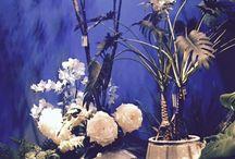 Botanische stijl / De trend van 2016 is Botanic chic. Volg ons pin bord en beleef de sfeer. Haal je inspiratie op het gebied van wonen en lifestyle bij www.pieterszevenbergen.nl
