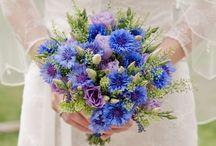 Búzavirág esküvő
