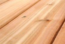 סוגי עצים - עץ ועצה / עולם העץ מכיל ידע רב על סוגי עצים ודרכי הטיפול בהם.  בשל כך ועל מנת להקל על מלאכת החיפוש בנינו עבורכם את קטלוג מוצרי העץ שהשימוש בו קל וברור.
