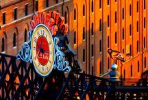 Baltimore Orioles / by Millie Lichtenberg