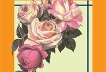 iUniverse Bookstore - GARDENING / GARDENING | iUniverse Bookstore / by iUniverse, Inc.