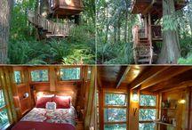 проекты домов на дереве